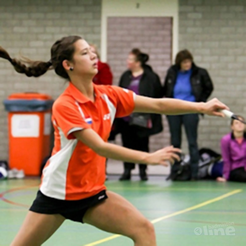 Vacature bondscoach online op badminton.nl