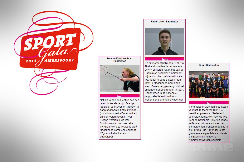 BC Amersfoort verkozen tot sportploeg van het jaar